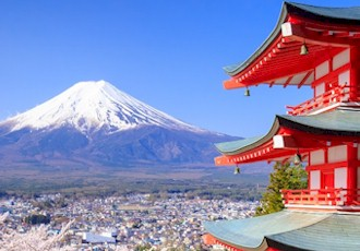 Flavors of Tokyo Cultural & Culinary Adventure