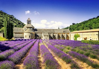 A Culinary Exploration of Provence and the South of France